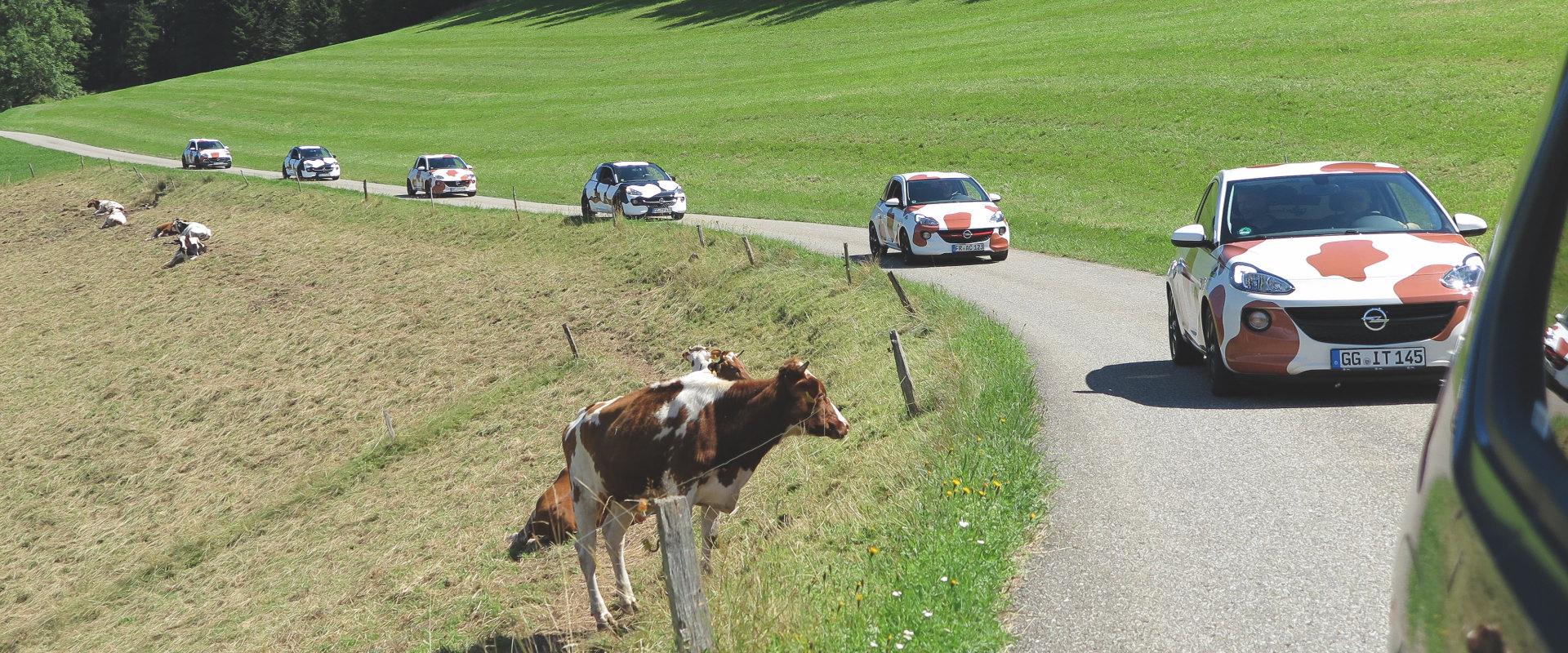 Guerilla Aktion Schwarzwaldmilch Almabtrieb mit Autos