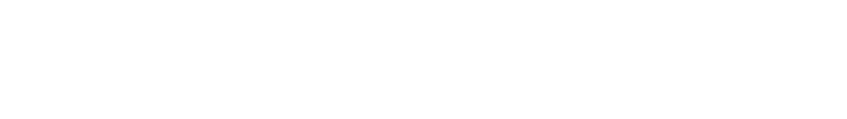 Logo Screen Visions